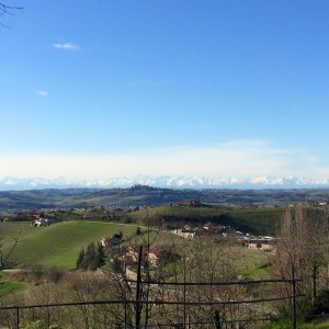 Foraging day in the beautiful Langhe