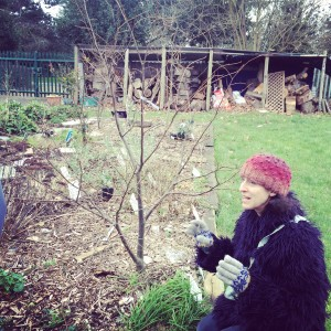 Taste of Forest Gardening Edible Landscapes Finsbury Park- Tastes of Carolina
